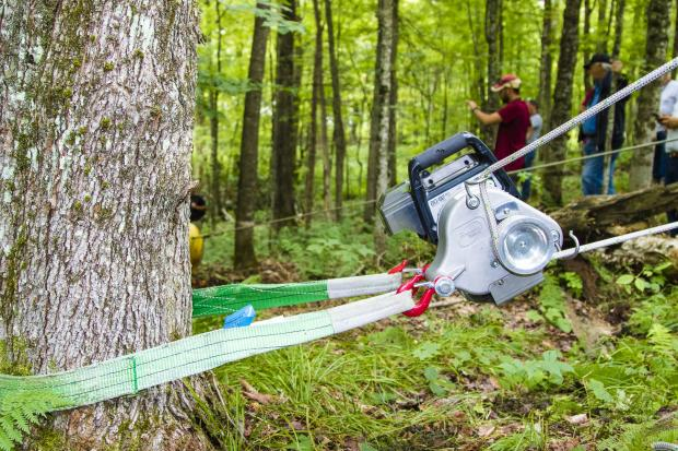 Small-scale machinery for woodland management