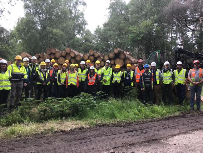 Builders take field trip into the forest