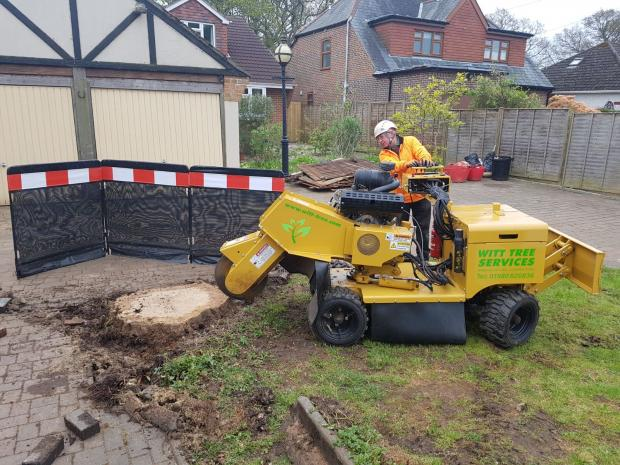 Forestry Journal: Stumpgrinding in Bournemouth.