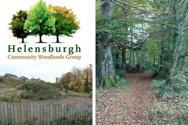 Historic woodland buyout rejected