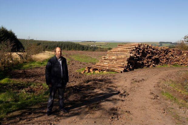 Thousands of trees felled in Central Scotland as disease spreads
