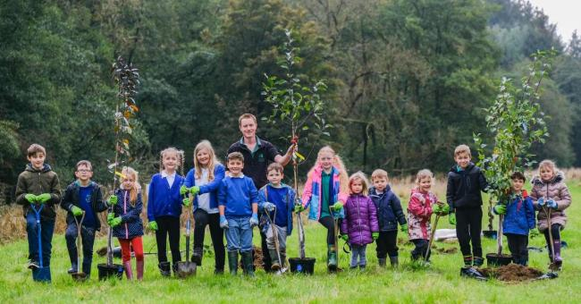 100 trees planted in Dalby to mark forest centenary
