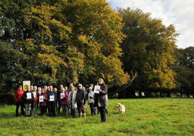 Fury at housebuilder's plans to chop down 97 trees in Highworth woodland