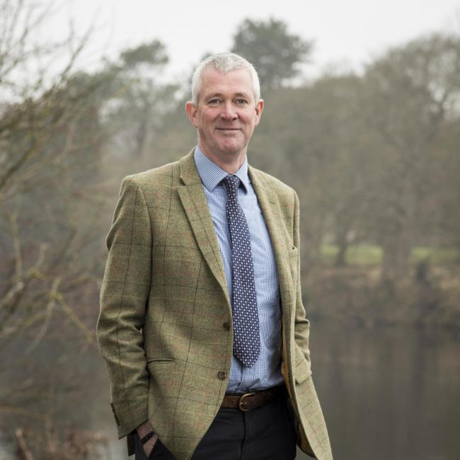 Galbraith appoints new head of forestry