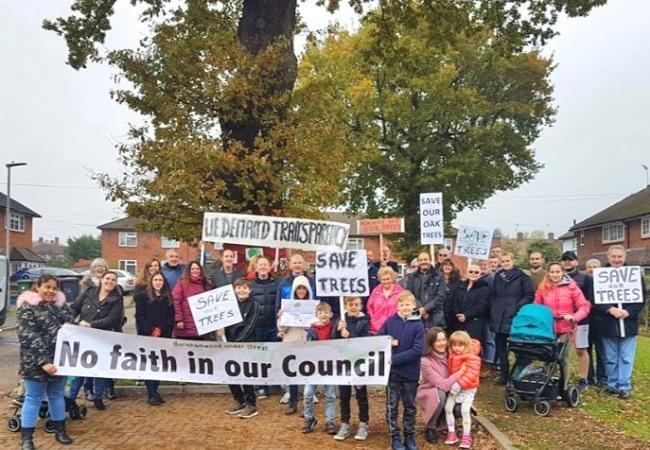 Battle to save Borehamwood oak trees