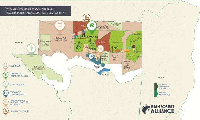 25-year extension granted to community forest concession in Guatemala
