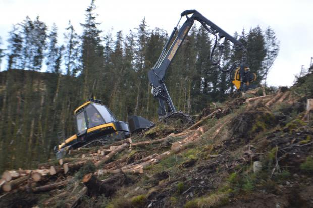 Forestry Journal: The new Ergo at work, with Sam at the controls.