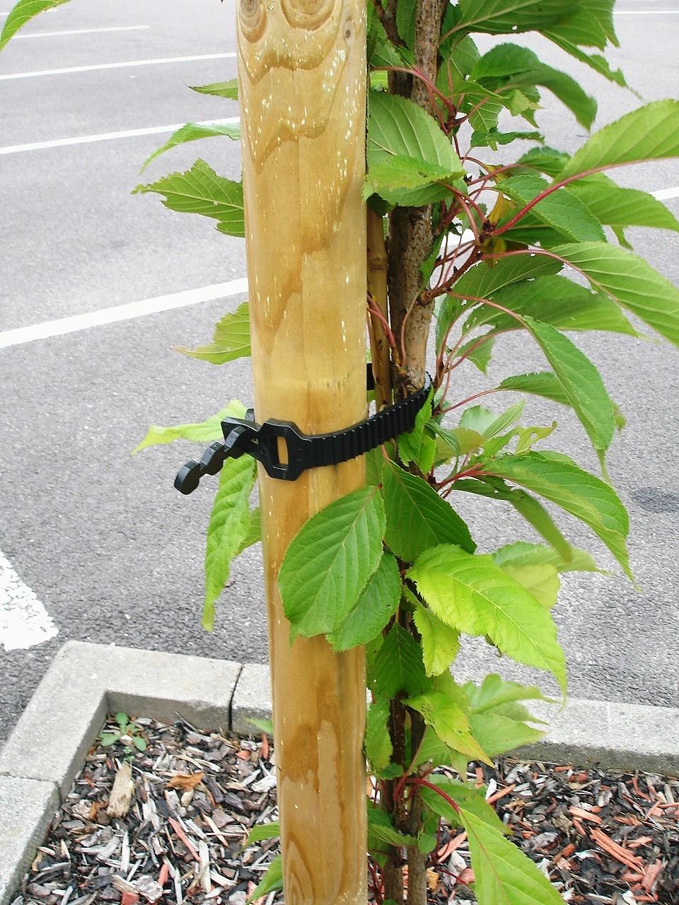 60cm HEAVY DUTY SOFT RUBBER PLANT INTERLOCKING TREE 10 SHRUB TIES