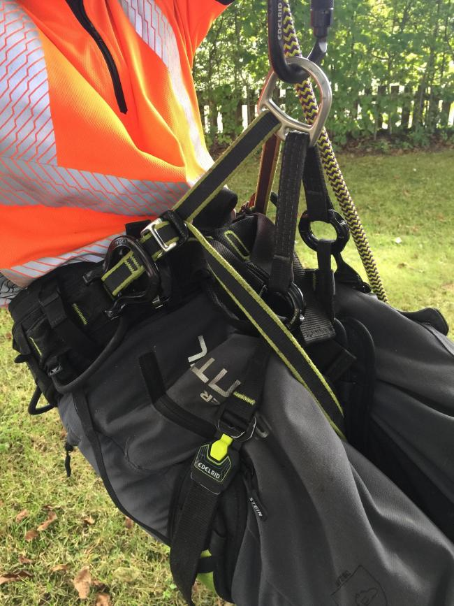 Edelrid Tree Core triple-lock harness.