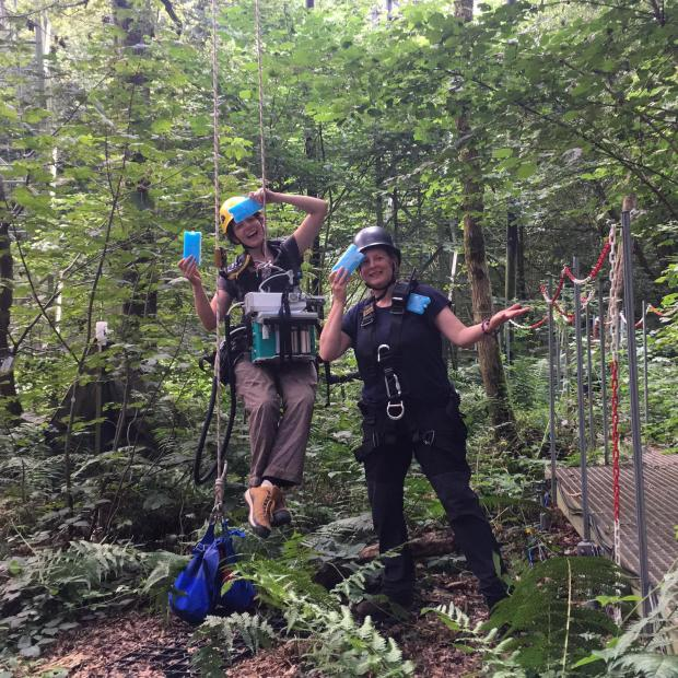 Forestry Journal:  Anna Gardner and Gael in the woods with icepacks during the August heatwave.