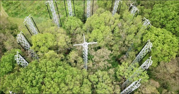 Forestry Journal: Image of Array 3 from a drone.
