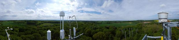 Forestry Journal: Images from flux tower (with various instruments) across the site.