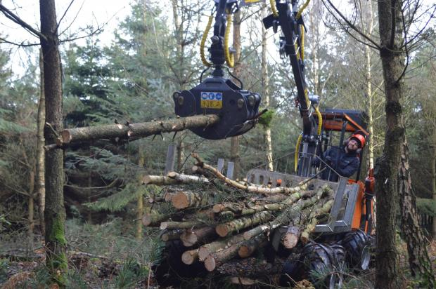 Forestry Journal: Mike can quickly jump out of his Logbullet to clear an obstacle, here using his trusty Husqvarna 550XPG MK2 to make a path through the trees, though he is considering investing in a battery-powered model.
