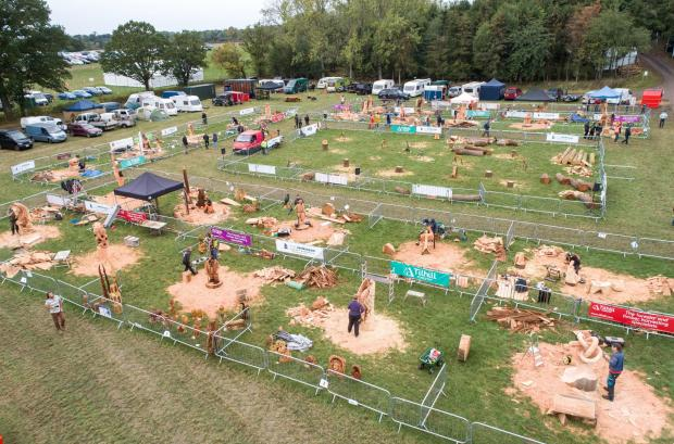 Forestry Journal: APF 2020 will play host to the European Chainsaw Carving Championships.