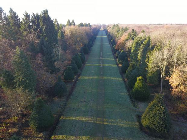 Forestry Journal: Visitors once approached Clipsham Hall, the former seat of the Davenport-Handley family, via its Yew Tree Avenue. Lined with some 150 splendidly topiaried trees, the avenue had a length of 700 m.