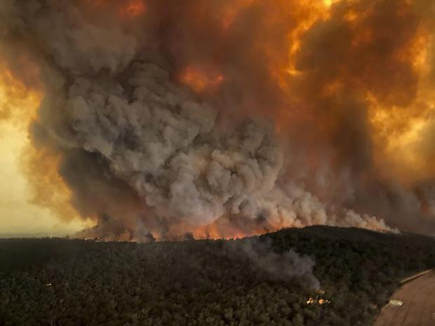Forestry Journal: Wildfires rage under plumes of smoke in Bairnsdale, Australia.