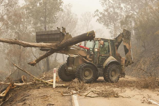Forestry Journal: Plant operators use a 434 backhoe to assist staff from Forestry Management Victoria to clear fire damaged trees from the great Alpine road between Bairnsdale and Omeo during Operation Bushfire Assist 19-20 in Bairnsdale, Victoria, Australia.