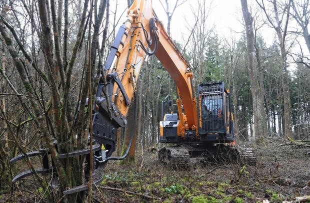 Forestry Journal: Chris Hall of RVC Forestry drives the 24-tonne Hyundai 235 excavator (with biodegradable hydraulic oil) with JAK tree shear (from Jas P Wilson). The Hyundai 235 excavator has zero tail swing; good for working in plantations.