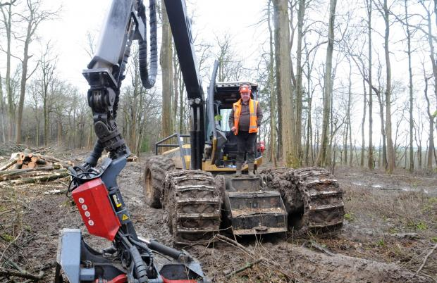 Forestry Journal: Neil Packwood of L&P Forestry.