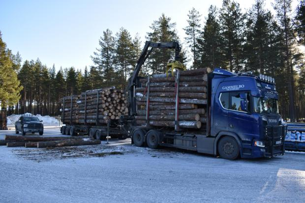 Forestry Journal: During transportation, the stakes and throw-overs compress the stack with an even pressure to ensure the cargo doesn't slip.