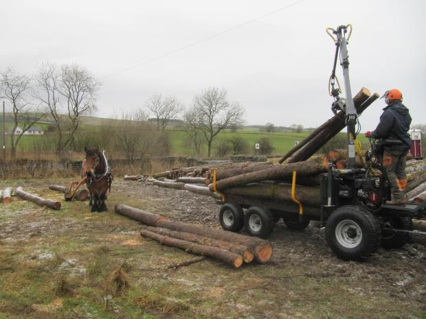 Forestry Journal:  David stacking with the FORS MW forwarder.