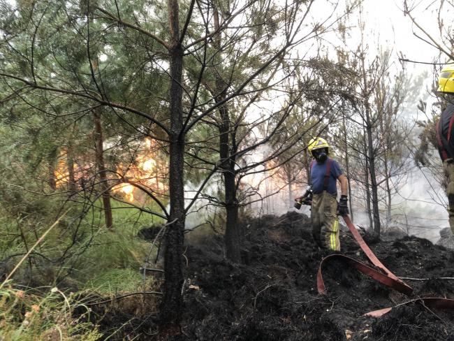 Fundraising for firefighters after Ringwood Forest fire