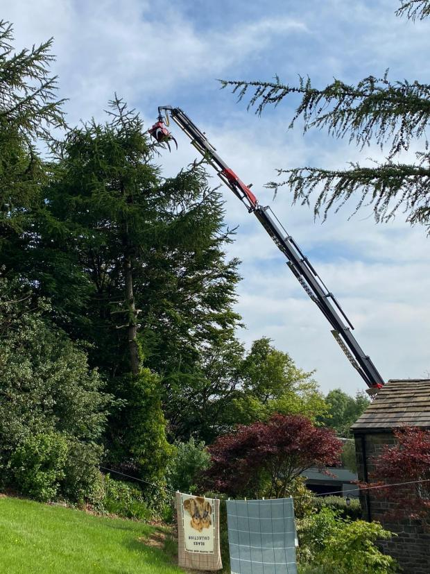 Forestry Journal: Testing the crane at full extension.