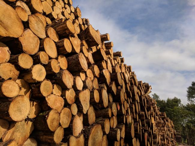A tricky year in the firewood business