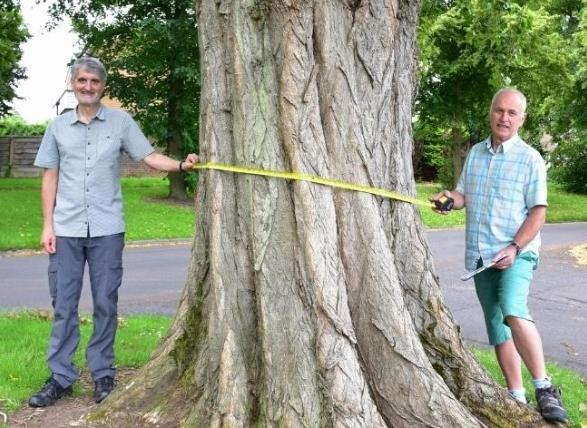 Kevin Griffiths and Malcolm Thomas map the town's trees as part of the Nature Action Plan.