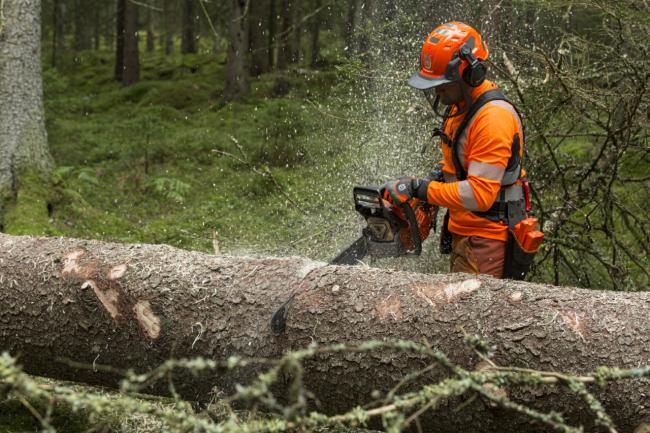 Next professional high-power chainsaw generation from Husqvarna