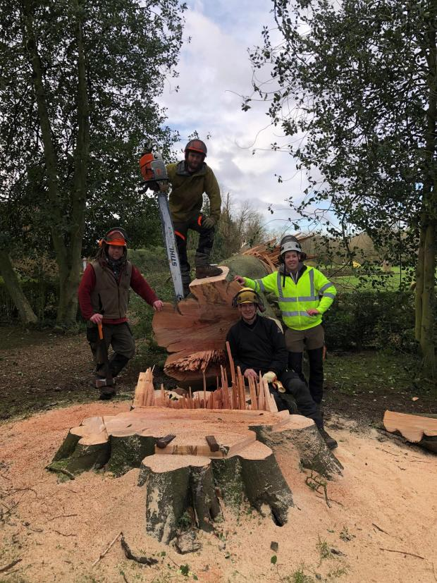 Forestry Journal: The Stanford Tree Care team at work (Ollie on the right, with Nigel sitting).