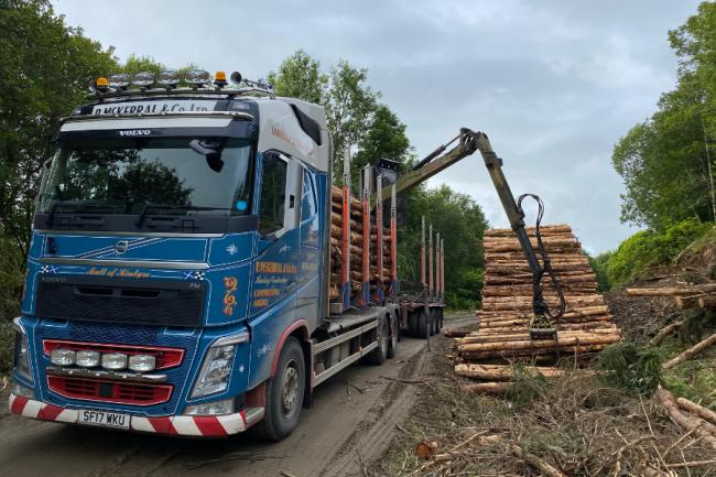 Timber imports reach 13-year monthly high