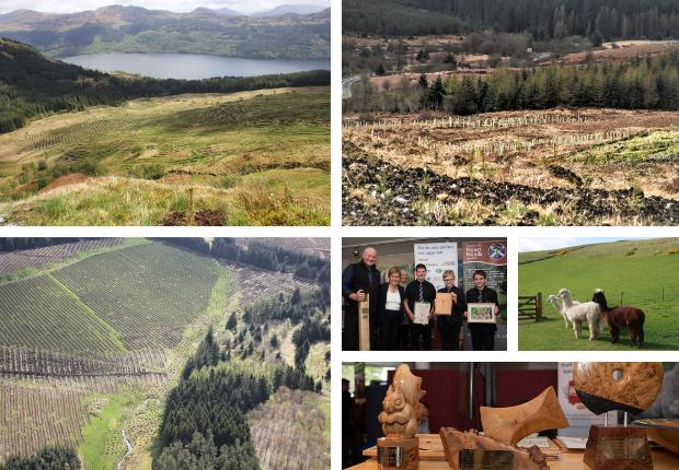 Deadline approaches for entrants to Scotland's Finest Woods Awards 2021