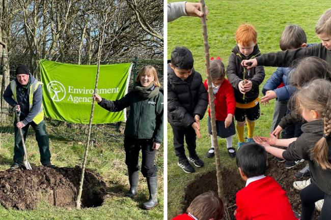 More than 250 trees planted as part of North East flood scheme
